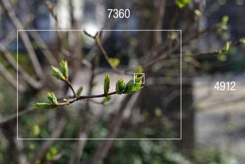 Image test Nikon D800