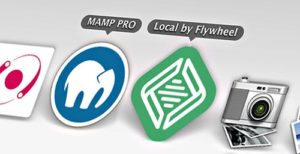 MAMP vs Local by FlyWheel