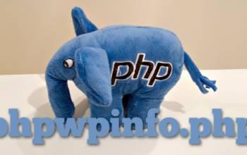 Tester son hébergement pour WordPress avec phpwpinfo.php