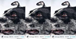 Les 3 types de compression d'IMAGIFY