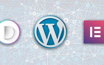 WordPress, Divi, Elementor: quelques chiffres pour 2020