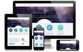 Thèmes Premium pour WordPress: la coupe est-elle pleine?