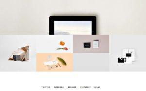 Thème WP Lobo - Home page