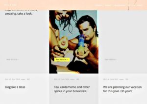 Thème WP Lobo - Page Blog