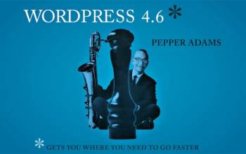 WordPress 4.6 : une version de transition