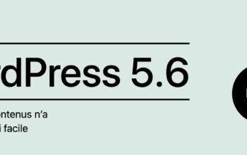 WordPress 5.6: pas de précipitation!