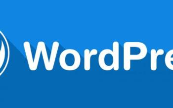 WordPress la grosse tête ?