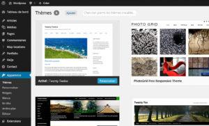Gestion des thèmes avec WordPress 3.8